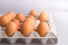 Eggs on cardboard tray Royalty Free Stock Photography