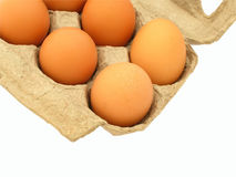Eggs in carton. Closeup of half a dozen eggs in carton, isolated on white background Royalty Free Stock Images