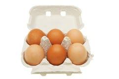 Eggs in a carton Stock Image