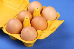 Eggs in a Carton. Brown Chicken or Hen eggs in a yellow carton on a blue textured paper background Royalty Free Stock Photos