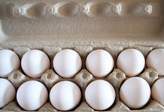 Eggs In Carton. Organic white eggs in paper carton Stock Photography
