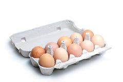 Eggs in carton Stock Photography