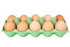 Eggs in a carton Stock Photos
