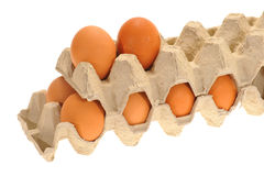 Eggs In Carton Royalty Free Stock Photography