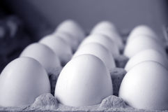 Eggs in carton Royalty Free Stock Photos