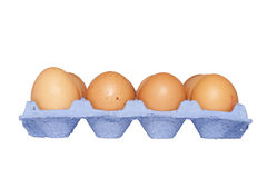 Eggs in carton basket. Brown eggs in blue carton basket isolated on white background Royalty Free Stock Images