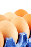 Eggs in carton box Stock Images
