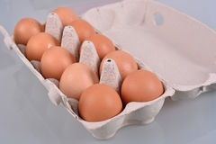 Eggs in a carton box Stock Images
