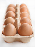 Eggs in a carton box. Stock Image