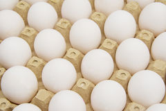 Eggs in carton with clipping path. White eggs Royalty Free Stock Image