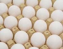Eggs in carton with clipping path. White eggs Stock Photography