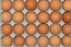 Eggs in a carton closeup view Royalty Free Stock Images