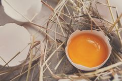 Eggs carton. Healthy food background. Yellow yolk Stock Image