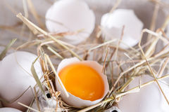 Eggs carton. Healthy food background. Yellow yolk Stock Photo