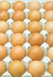 Eggs carton Stock Photos