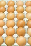 Eggs carton Stock Photos