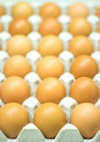 Eggs carton Royalty Free Stock Photo