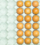 Eggs carton Royalty Free Stock Photography