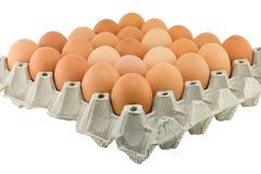 Eggs in a carton Royalty Free Stock Photos