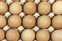 Eggs in carton package ready for backeying close up. Eggs in carton package ready for backeing Stock Photos