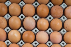 Eggs carton texture background Stock Image