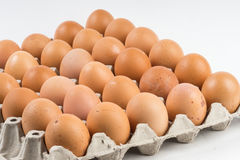 Eggs carton white background Stock Photos