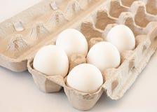 Eggs Stock Photos