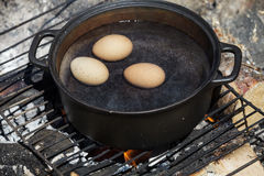 Eggs in a Cast Cauldron full Boiling Water Stock Image