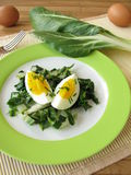 Eggs on chard vegetables Royalty Free Stock Images