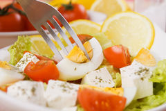 Eggs and cheese salad Royalty Free Stock Photography