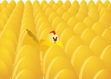 Eggs and chicken. Number of eggs. One egg hatched chick. The illustration on white background Royalty Free Stock Photography