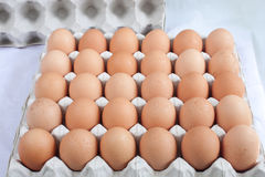 Eggs chicken. Is a white background Stock Photos
