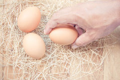 Eggs from chicken farm Royalty Free Stock Image