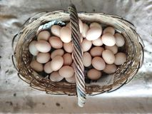 Eggs chicken lot lie in the wicker basket of wooden rods. basket wooden rods filled with chicken eggs light brown. Eggs chicken lot lie wicker basket wooden rods stock photo