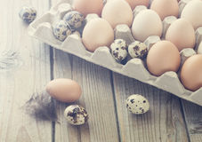 Eggs from chicken and quail farm in the package. Nice and clean toning Royalty Free Stock Photos