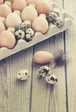 Eggs from chicken and quail farm in the package. Nice and clean toning Royalty Free Stock Photo