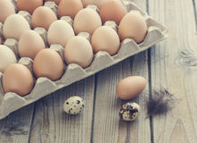 Eggs from chicken and quail farm in the package. Nice and clean toning Stock Photo