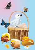 Eggs, chickens, ducklings and butterflies Royalty Free Stock Photography