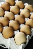 Eggs of chickens. Eggs that were scattered on the dark background Royalty Free Stock Photo