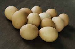 Eggs of chickens. Eggs that were scattered on the dark background Stock Photo