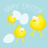 Eggs and Chicks Easter Design Stock Images