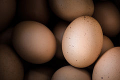 Eggs, close up as a vintage style Stock Image
