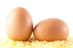 An eggs Royalty Free Stock Image