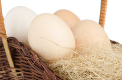 Eggs closeup Royalty Free Stock Images