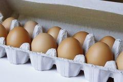 Eggs Royalty Free Stock Photos