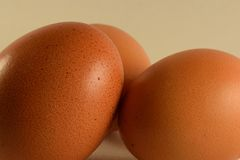 Three eggs closeup Stock Photos