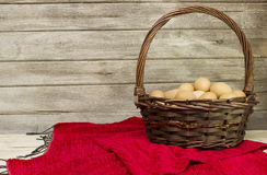 Eggs collected from farms Royalty Free Stock Images
