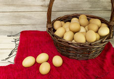 Eggs collected from farms Stock Photos