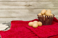 Eggs collected from farms Stock Images