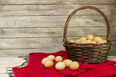 Eggs collected from farms Stock Photo